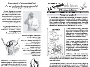 Semilla 607