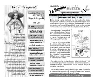 Semilla 728 16-08-151