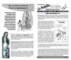 Semilla 738 25-10-15