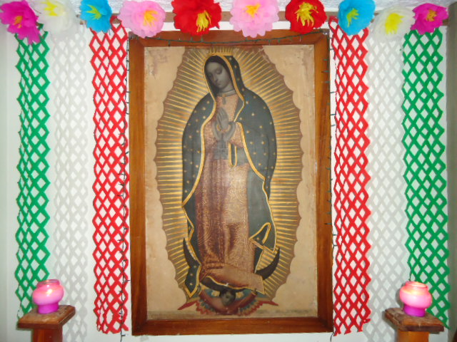 altar-a-la-virgen-de-guadalupe-foto-jesus-reynaga-rito