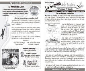 Semilla 801 15-01-17