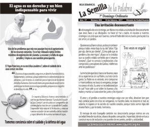 Semilla 806 19-02-17