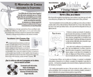 Semilla 807 26-02-17