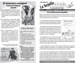 Semilla 819 28-05-17