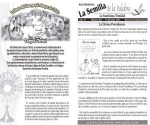 Semilla 821 11-06-17
