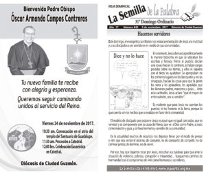 Semilla 842 5 -11-17