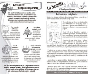 Semilla 846 3 -12 -17