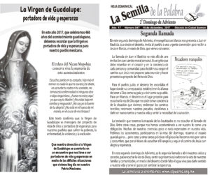 Semilla 847 10 - 12 - 17