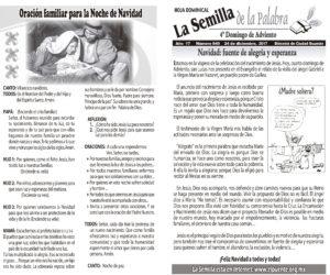Semilla 849 24 - 12 - 17