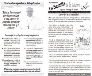 Semilla 863 8 -04 -18