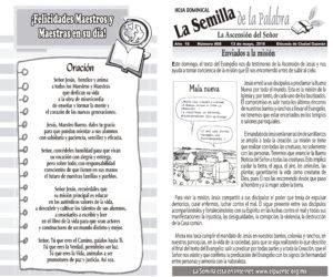 Semilla 868 13 -05 -2018