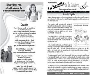 Semilla 869 20 - 05 - 2018