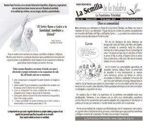 Semilla 870 27 -05 -2018