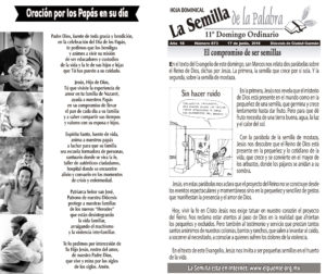 Semilla 873 17 -06 -2018