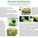 Las semillas con vida – Remedios de mi pueblo